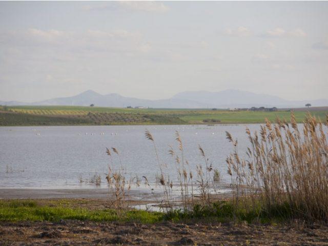 Laguna de Ruíz Sánchez