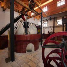 Musée de l'oliveraie et de l'huile d'olive