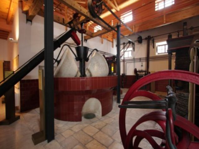 Baena's Olive and Olive Oil Museum