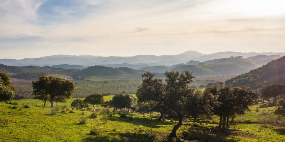 Naturaleza y senderos en el interior de Andalucía