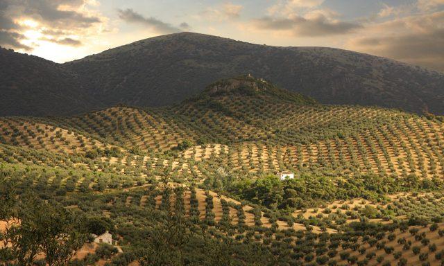 Sierra de Albayate