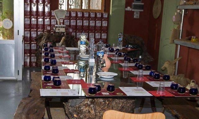 Aceites Vizcántar (olive oil)