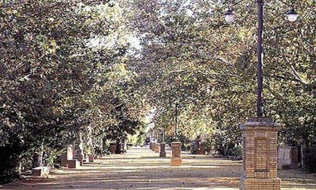 Alameda de Alfonso XIII y Fuente de los Leones