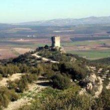 Château Anzur