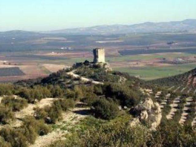 Anzur castle