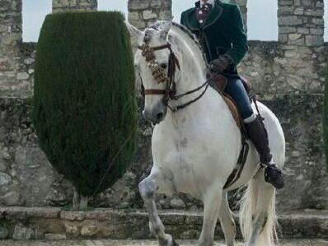 La Garrocha equestrian centre