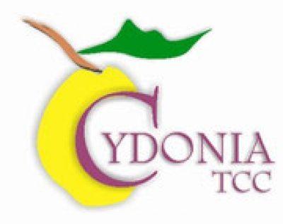 Cydonia. Guided tours