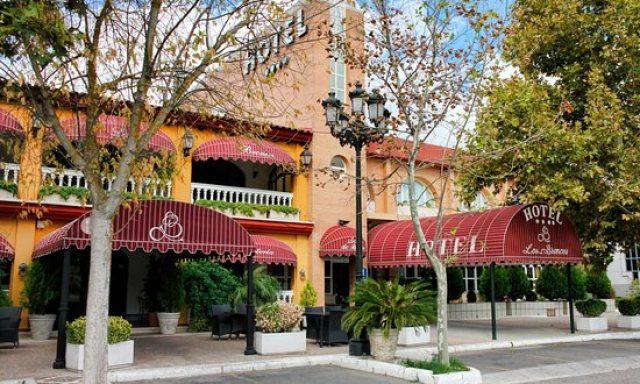 Hotel los Bronces ****