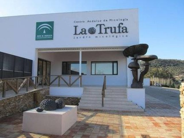 Mycological garden and Andalusian Mycology Centre 'La Trufa'