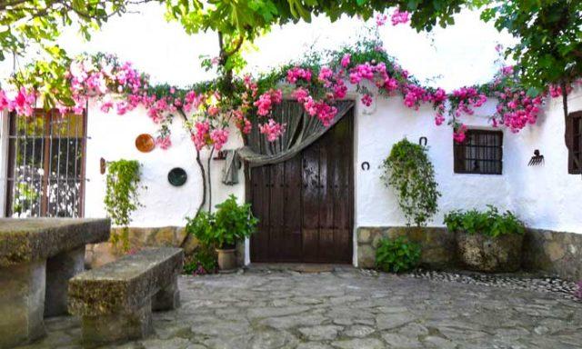 Alojamiento Rural La Gineta (3 houses)