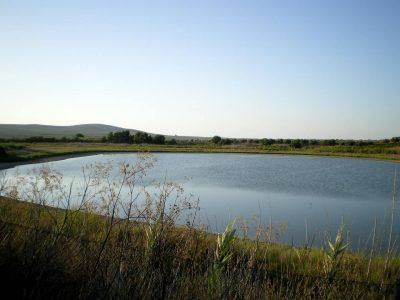 Laguna del Rincón del Muerto