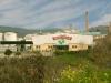 Almazara Mueloliva (olive mill)