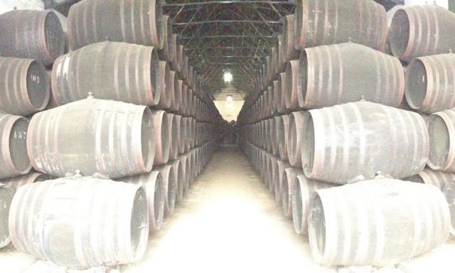 Bodegas Herederos Torres Burgos